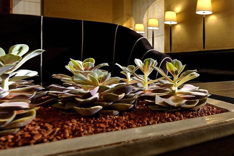 Gemeinschaftsräume  art hotel novecento bologna